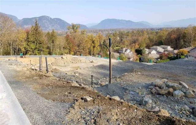 43925 Chilliwack Mountain Road #22, Chilliwack, BC V2R 4A1 (#R2343132) :: TeamW Realty