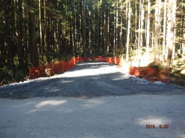 12785 Blue Mountain Crescent, Maple Ridge, BC V2W 1N7 (#R2343958) :: Vancouver Real Estate