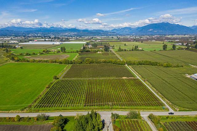 34486 Clayburn Road, Abbotsford, BC V2S 7T5 (#R2344497) :: Premiere Property Marketing Team