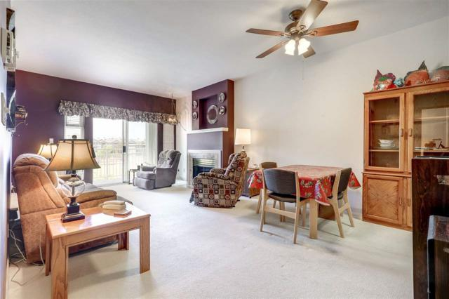 4728 53 Street #212, Delta, BC V4K 2Z1 (#R2344790) :: Vancouver Real Estate