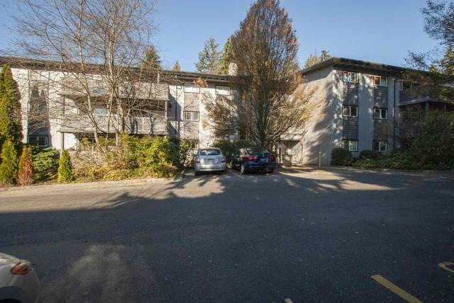 204 Westhill Place #328, Port Moody, BC V3H 1V2 (#R2346506) :: TeamW Realty