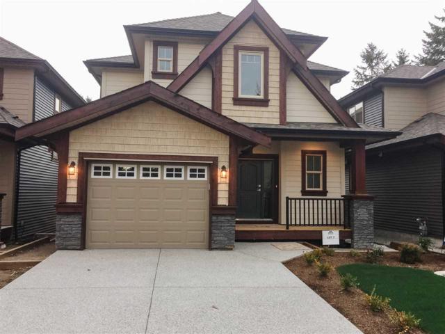 2427 Friskie Avenue, Port Coquitlam, BC V3B 7P9 (#R2346958) :: Vancouver Real Estate
