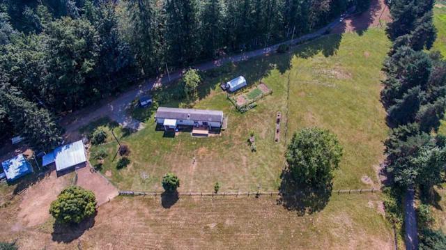 42661 Canyon Road, Cultus Lake, BC V2R 4X7 (#R2347770) :: TeamW Realty