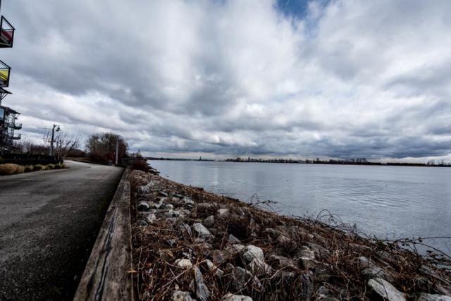 14200 Riverport Way #412, Richmond, BC V6W 1M4 (#R2347992) :: Vancouver Real Estate