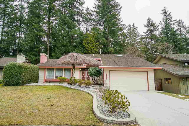 7020 Woodcrest Place, Delta, BC V4E 2P2 (#R2348105) :: TeamW Realty