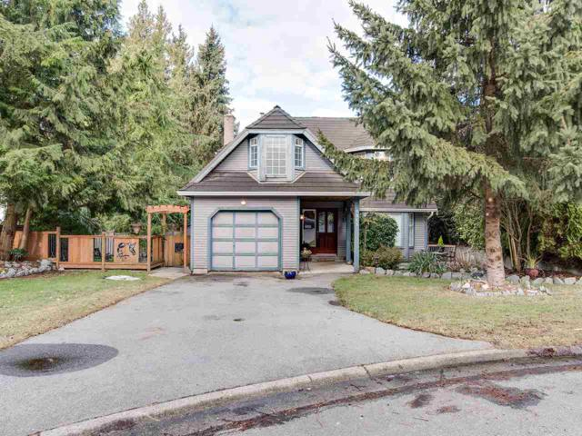 8985 Watson Court, Delta, BC V4C 8A1 (#R2348491) :: TeamW Realty