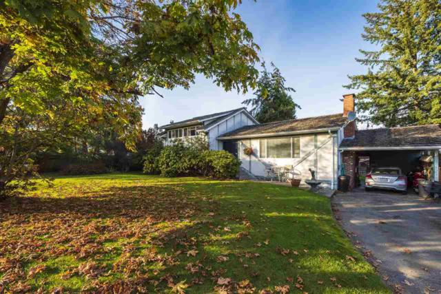 5153 Cliff Drive, Delta, BC V4M 2C4 (#R2348845) :: TeamW Realty