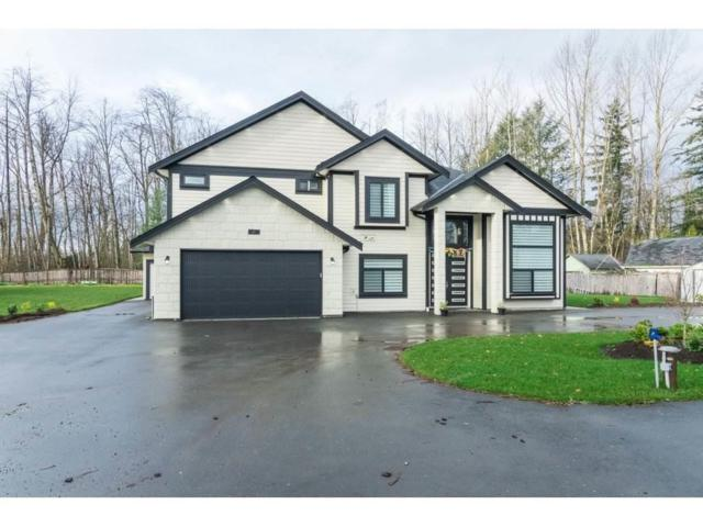 2365 264 Street, Langley, BC V4W 2L5 (#R2349356) :: Premiere Property Marketing Team
