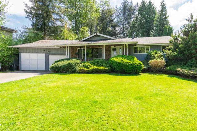 9072 Trattle Street, Langley, BC V1M 2R4 (#R2349389) :: Premiere Property Marketing Team