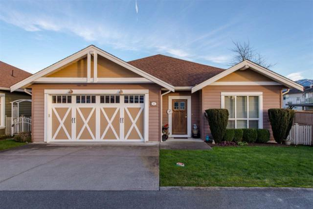 7600 Chilliwack River Road #64, Chilliwack, BC V2P 0A1 (#R2349457) :: TeamW Realty