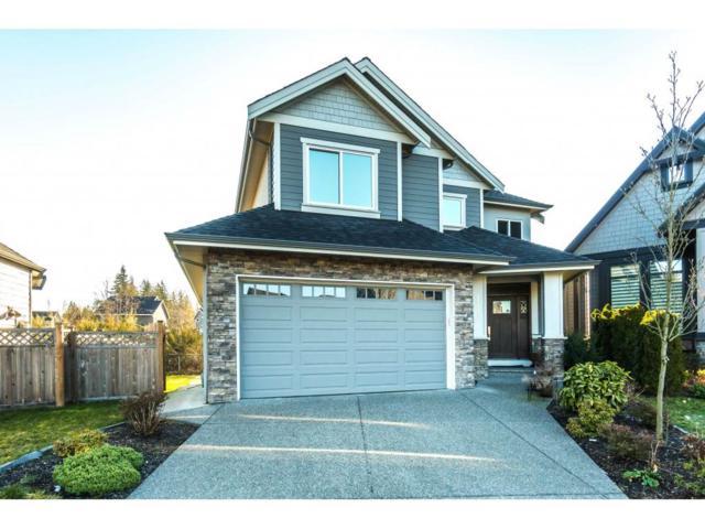 15946 105TH Avenue, Surrey, BC V4N 3J4 (#R2349590) :: Premiere Property Marketing Team