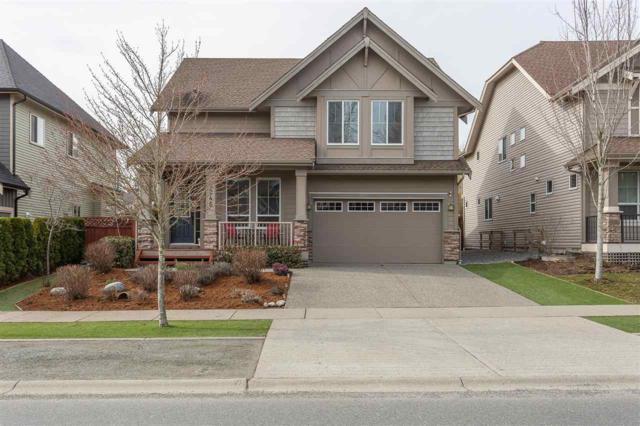 2245 Merlot Boulevard, Abbotsford, BC V4X 0A6 (#R2349620) :: Premiere Property Marketing Team