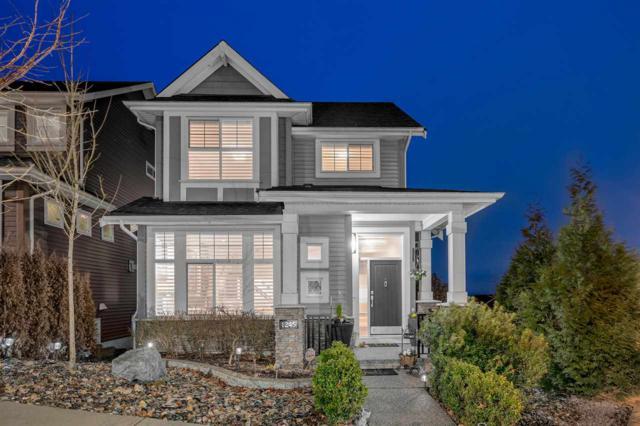 1245 Soball Street, Coquitlam, BC V3B 3H7 (#R2349669) :: TeamW Realty