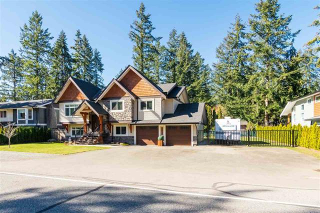 3883 204 Street, Langley, BC V3A 1X6 (#R2350455) :: Premiere Property Marketing Team