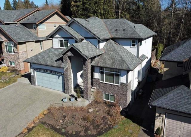 13056 240 Street, Maple Ridge, BC V4R 0A9 (#R2351056) :: TeamW Realty