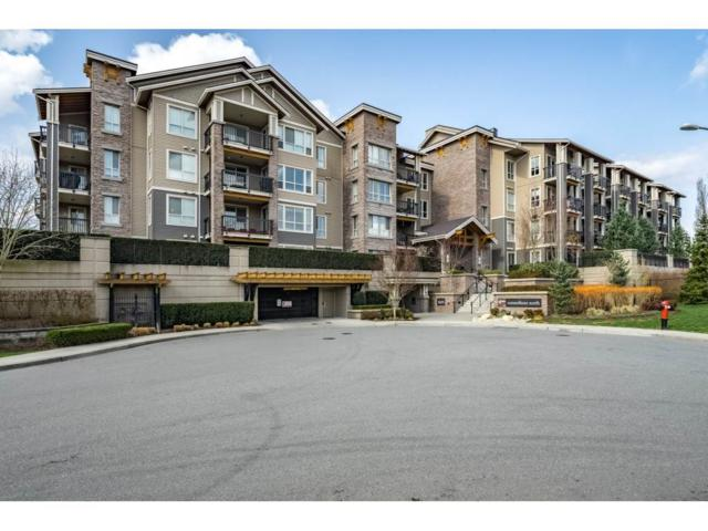 5655 210A Street #424, Langley, BC V3A 0G4 (#R2351082) :: Premiere Property Marketing Team