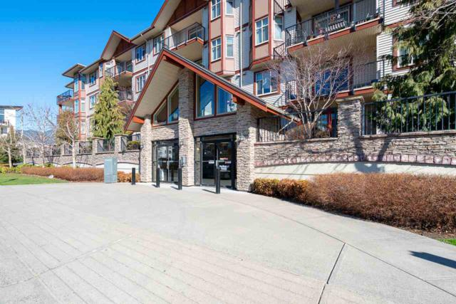 45615 Brett Avenue #311, Chilliwack, BC V2P 1P1 (#R2351165) :: TeamW Realty