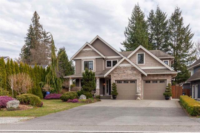 8924 Trattle Street, Langley, BC V1M 2S1 (#R2351684) :: Premiere Property Marketing Team
