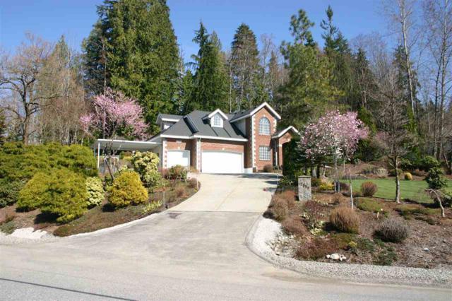 12580 261 Street, Maple Ridge, BC V2W 1C4 (#R2353309) :: TeamW Realty