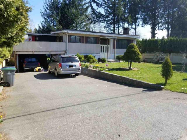 9726 121 Street, Surrey, BC V3V 4J5 (#R2355059) :: TeamW Realty