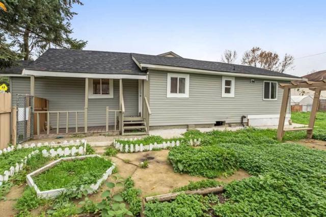 11448 128 Street, Surrey, BC V3R 2X3 (#R2356907) :: Royal LePage West Real Estate Services