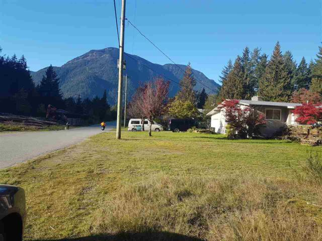 20028 Beacon Road, Hope, BC V0X 1L2 (#R2357343) :: Royal LePage West Real Estate Services