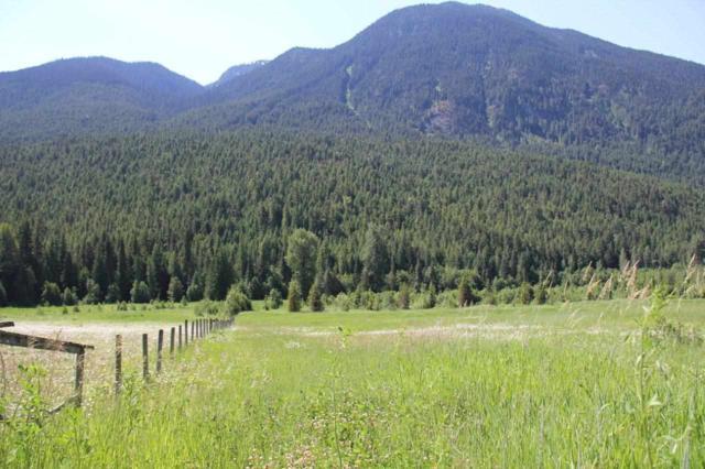 2672 Blackwater Road, Pemberton, BC V0N 2H1 (#R2357414) :: Vancouver Real Estate