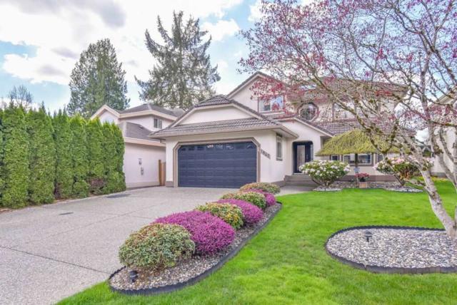 11841 236B Street, Maple Ridge, BC V4R 2C9 (#R2359613) :: TeamW Realty