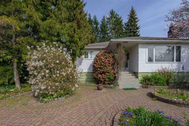 4724 Mahon Avenue, Burnaby, BC V5G 3R5 (#R2360325) :: Royal LePage West Real Estate Services