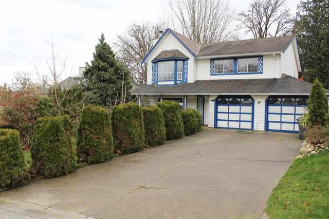 11292 Roxburgh Road, Surrey, BC V3R 9J3 (#R2360656) :: TeamW Realty