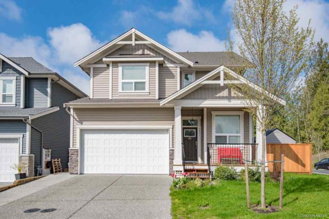 11273 243A Street, Maple Ridge, BC V2W 1H5 (#R2360794) :: TeamW Realty