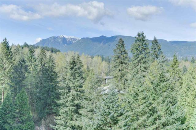 2004 Fullerton Avenue #1305, North Vancouver, BC V7P 3G8 (#R2360930) :: Vancouver Real Estate