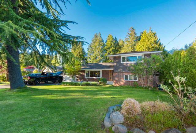 4735 Wesley Drive, Delta, BC V4M 1W7 (#R2361273) :: Royal LePage West Real Estate Services