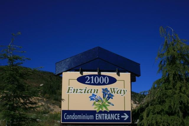 21000 Enzian Way 308B, Agassiz, BC V0M 1A1 (#R2361341) :: Vancouver Real Estate