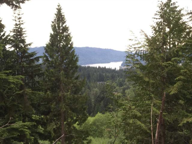 1920 North Charlotte Road Lot 18, Anmore, BC V3H 0G7 (#R2363092) :: Vancouver Real Estate