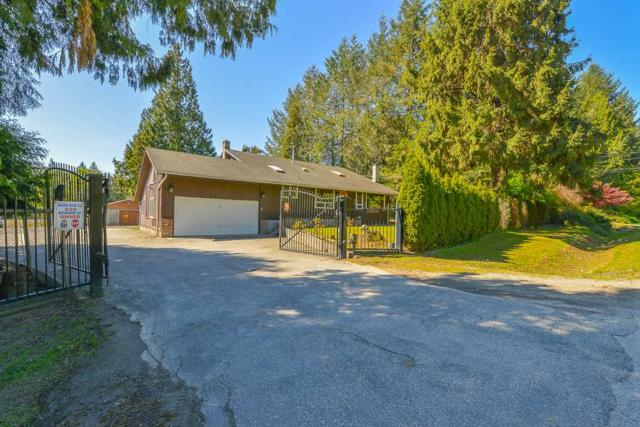 26204 60 Avenue, Langley, BC V4W 1L2 (#R2365467) :: Royal LePage West Real Estate Services