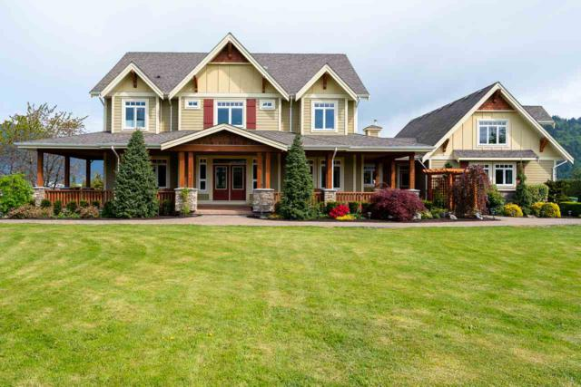 42457 Yale Road, Sardis - Greendale, BC V2R 4J4 (#R2365640) :: Royal LePage West Real Estate Services