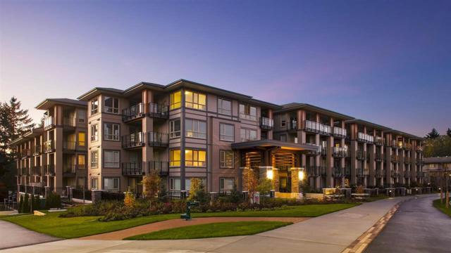 3399 Noel Drive #202, Burnaby, BC V3J 0G8 (#R2365749) :: Vancouver Real Estate