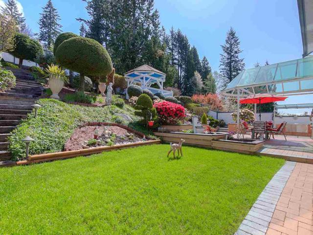 4188 Starlight Way, North Vancouver, BC V7N 4J5 (#R2365946) :: Vancouver Real Estate