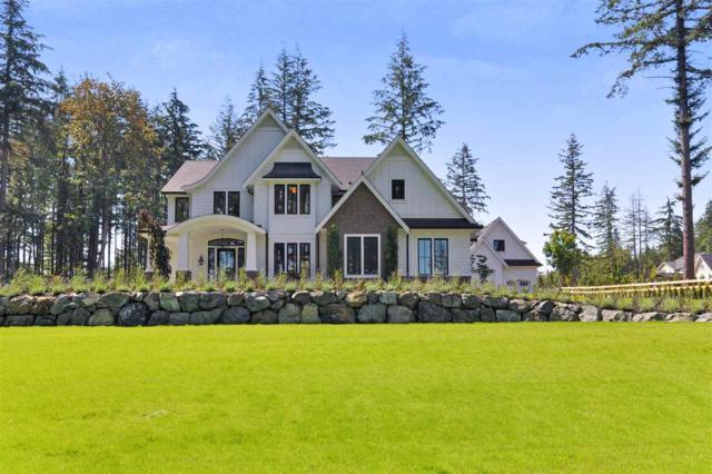 126 208 Street, Langley, BC V2Z 1T7 (#R2366777) :: Vancouver Real Estate