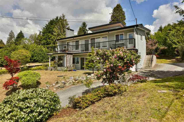 1239 Ioco Road, Port Moody, BC V3H 2W9 (#R2367046) :: Royal LePage West Real Estate Services
