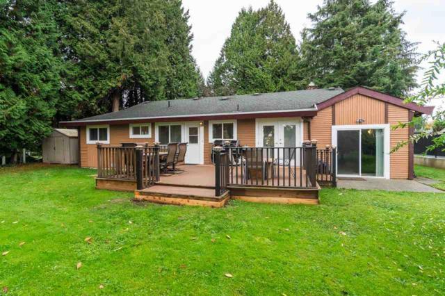 22908 88 Avenue, Langley, BC V1M 2S4 (#R2367632) :: Vancouver Real Estate