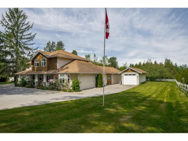 18907 80 Avenue, Surrey, BC V4N 4J1 (#R2367640) :: Royal LePage West Real Estate Services