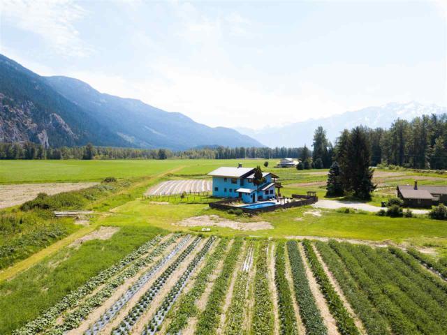 8184 Pemberton Meadows Road, Pemberton, BC V0N 2L2 (#R2367642) :: Vancouver Real Estate