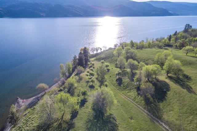 625 N 97 Highway, No City Value, BC V0H 1Z6 (#R2367829) :: Vancouver Real Estate