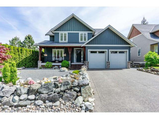14505 Morris Valley Road #1, Mission, BC V0M 1A1 (#R2368248) :: Royal LePage West Real Estate Services