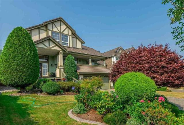 15541 Rosemary Heights Crescent, Surrey, BC V3Z 0K2 (#R2368993) :: Vancouver Real Estate