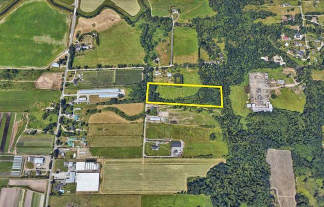 4334 186 Street, Surrey, BC V3S 0L5 (#R2369135) :: Royal LePage West Real Estate Services