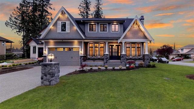 15916 107 Avenue, Surrey, BC V4N 3J1 (#R2369768) :: Vancouver Real Estate