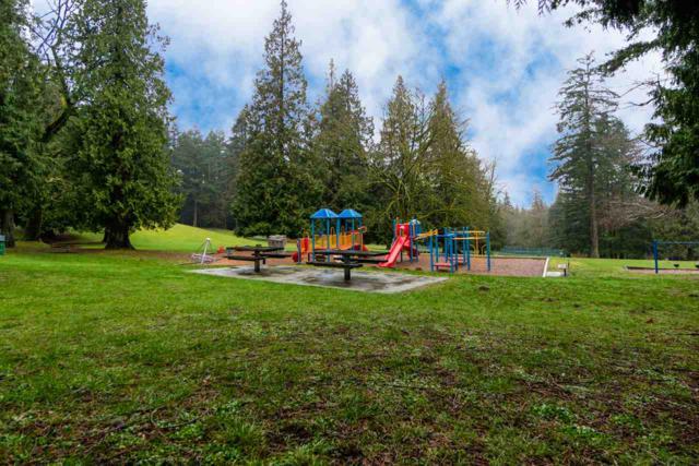 8236 Wedgewood Street, Burnaby, BC V3N 1C4 (#R2369793) :: Vancouver Real Estate